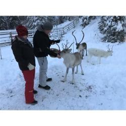 PINEA Herren Winter & Freizeitjacke AKI Farbe SCHWARZ